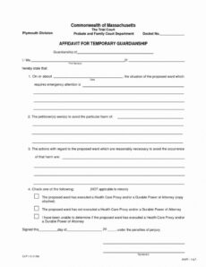 Best Child Guardianship Will Template Pdf Example