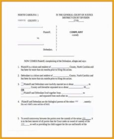 Professional Child Guardianship Will Template  Example