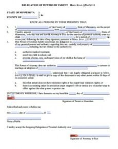 Professional Temporary Travel Will Template