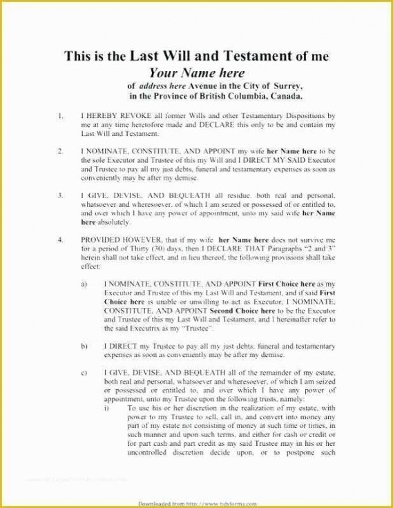 Professional Last Will And Testament Cover Page Template Excel