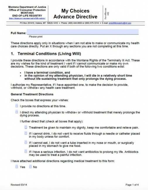 Editable Living Will Advance Directive Template Excel Sample
