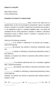 Editable Medical Living Will Template Word Sample