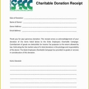 Costum Charitable Contribution Statement Template Excel Example